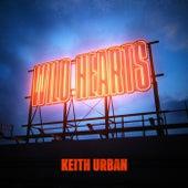 Wild Hearts by Keith Urban