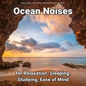 Ocean Noises for Relaxation, Sleeping, Studying, Ease of Mind fra Nature Sounds (1)