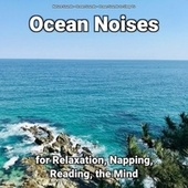Ocean Noises for Relaxation, Napping, Reading, the Mind fra Nature Sounds (1)