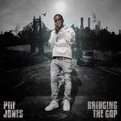 Bridging The Gap by Piif Jones