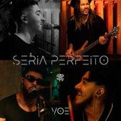 Seria Perfeito by Voe