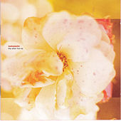 The Other Fool by Motorpsycho