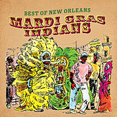 Best of New Orleans (Mardi Gras Indians) von Various Artists