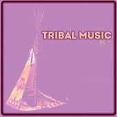 Tribal Music: V2 de Various Artists