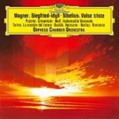 Wagner: Siegfried Idyll; Puccini: Crisantemi; Turina: La Oracion Del Torero; Berlioz: Reverie Et Caprice Romance Op. 8; Sibelius:  Valse Triste, Op. 44; Dvořák: Notturno in B Major, Op. 40 von Orpheus Chamber Orchestra
