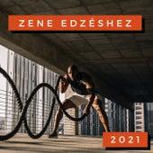 Zene Edzéshez 2021 by Various Artists