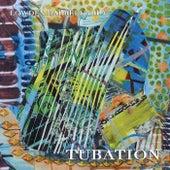 Tubation by Lowden Harrell Trio