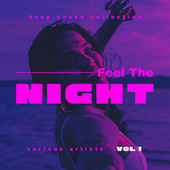 Feel The Night (Deep-House Collection), Vol. 1 di Various Artists