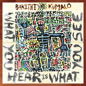 What You Hear Is What You See by Bakithi Kumalo