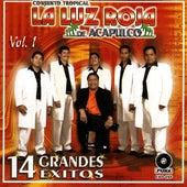 14 Grandes Exitos Vol. 1 by Conjunto Tropical la Luz Roja de Acapulco