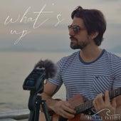 What's Up (Acoustic) de Rodrigo Pandeló