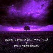 Recopilatorio del Post Punk y Dark Venezolano fra Various Artists