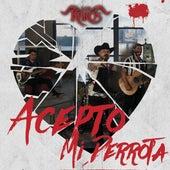 Acepto Mi Derrota by Los K-Bros