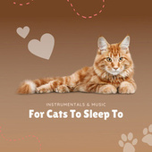 Instrumentals & Music For Cats To Sleep To by Pet Music Therapy