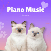 Piano Music For Cats by Pet Music Therapy