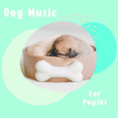 Dog Music For Pupies by Pet Music Therapy