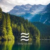 Music Noises of Singing Bowls by Reiki Healing Music Ensemble