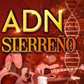 ADN - Sierreño by Various Artists