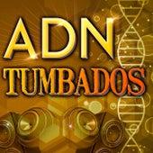 ADN - Tumbados by Various Artists