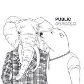 Oracolo von The Public