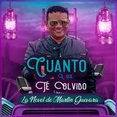 Cuanto a Que Te Olvido by La Novel De Martin Guevara