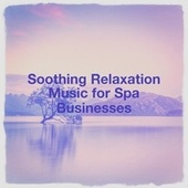 Soothing Relaxation Music for Spa Businesses by Relaxation - Ambient