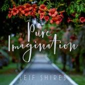 Pure Imagination (feat. Pat Coil, Jacob Jezioro & Danny Gottlieb) by Leif Shires