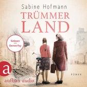 Trümmerland (Ungekürzt) von Sabine Hofmann