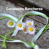 Corazones Rancheros by Various Artists