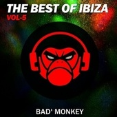 The Best of Ibiza Vol. 5, Compiled by Bad Monkey von Various Artists