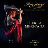 Tierra Mexicana by Rosy Arango