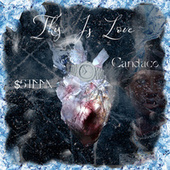 This Is Love de $Steen