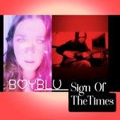 Sign Of The Times de Boyblu