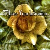 77 Lose Your Insomnia de Lullaby Land