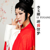 You Yuan Jing Meng de Li Yugang