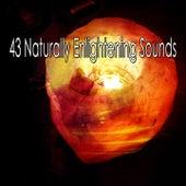 43 Naturally Enlightening Sounds by Lullabies for Deep Meditation