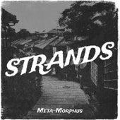 Strands von Metamorphus