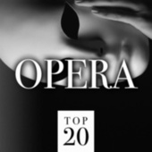 Top 20 Opera fra Various Artists