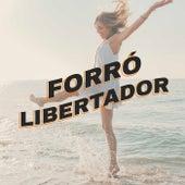 Forró Libertador by Various Artists