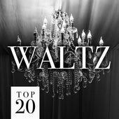 Top 20 Waltz fra Various Artists