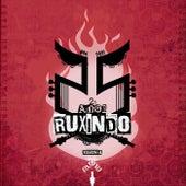 25 Anos Ruxindo - Tributo A Ruxe Ruxe by The Varios