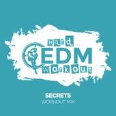 Secrets von Hard EDM Workout