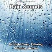 Rain Sounds for Night Sleep, Relaxing, Studying, Welfare fra Nature Sounds (1)