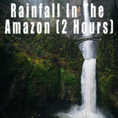 Rainfall In The Amazon (2 Hours) by Color Noise Therapy