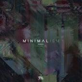 Minimalism, Vol. 10 di Various Artists