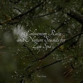 25 Enlivening Rain and Nature Sounds for Zen Spa by Instrumental