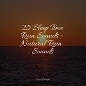 25 Sleep Time Rain Sounds - Natural Rain Sounds by Ocean Sounds (1)