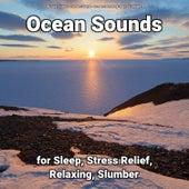 Ocean Sounds for Sleep, Stress Relief, Relaxing, Slumber fra Nature Sounds (1)