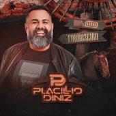 100% Forrozeiro by Placillio Diniz