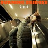Burning Bridges by Sigrid